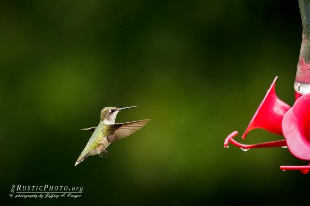 Braking for landing